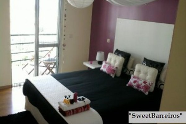 Holiday rental in Funchal in Funchal - Bild 1