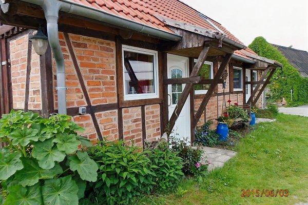 Ferienwohnung Kallfass in Krummin - immagine 1