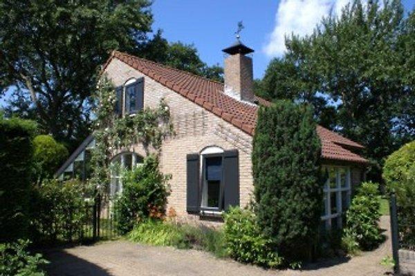 Schouwse Duin en Burgh Haamstede -  1