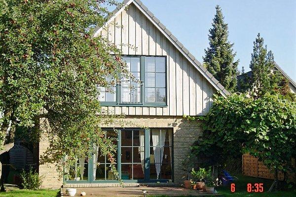 Garten und Blick auf beide Wohnungen