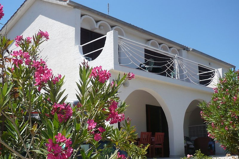 Our house is located in a green and quiet environment  only a few minutes walk from the sea and the beach.