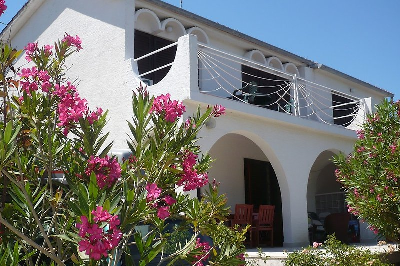 Unser Haus befindet sich in einer grünen and ruhigen Umgebung wenigen Minuten zu Fuss vom Meer und Strand entfernt.