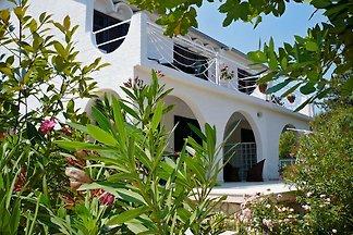 Villa- Appartamenti Zana ***