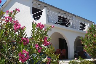 Apartments -Villa Zana