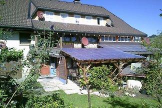 Ferienhaus Wannenhof