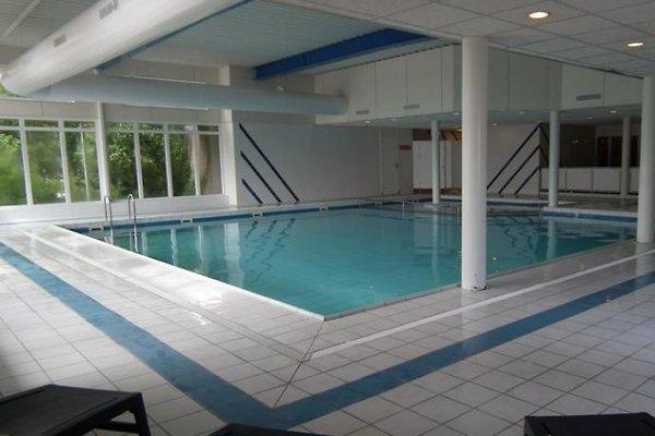 7 wohnungen schwimmbad viel extra ferienwohnung in hollum mieten. Black Bedroom Furniture Sets. Home Design Ideas