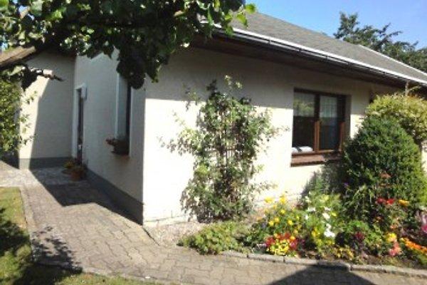Ferienhaus Birkenweg en Mirow - imágen 1