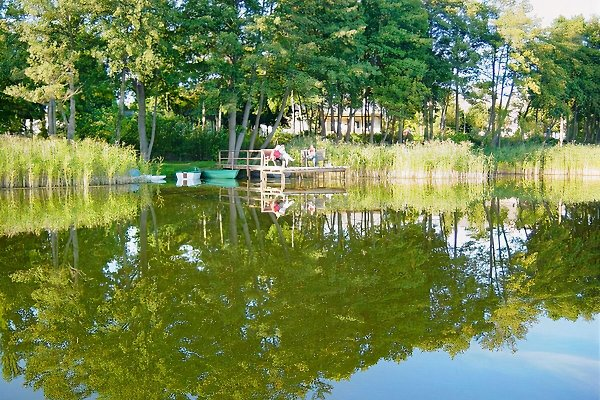 Bungalow am See in Dabel - immagine 1