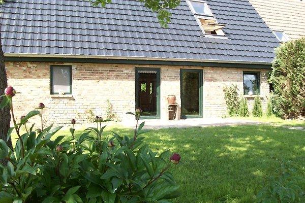Waldhaus Wolfskuhle in Grammentin - immagine 1