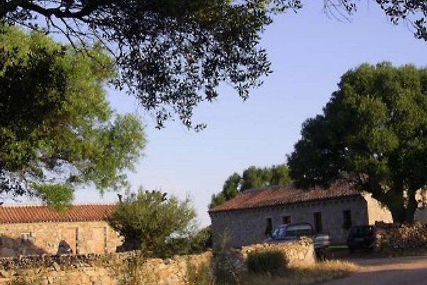Spridda Agritouristic Farm  in Olbia - Bild 1