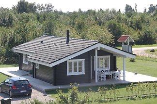 Ferienhaus Skovmose
