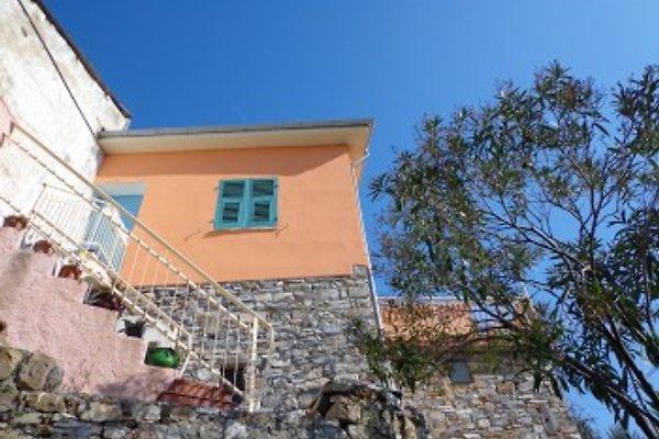 rocca à San Bartolomeo al Mare - Image 1