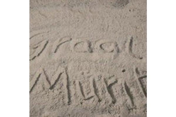 emmas-strandhuette  à Graal-Müritz - Image 1