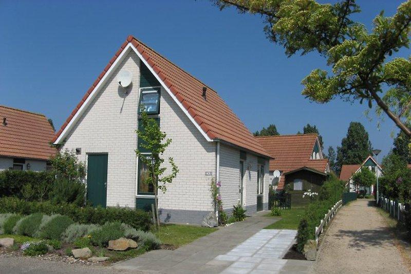 Vorgarten mit PKW-Stellplatz