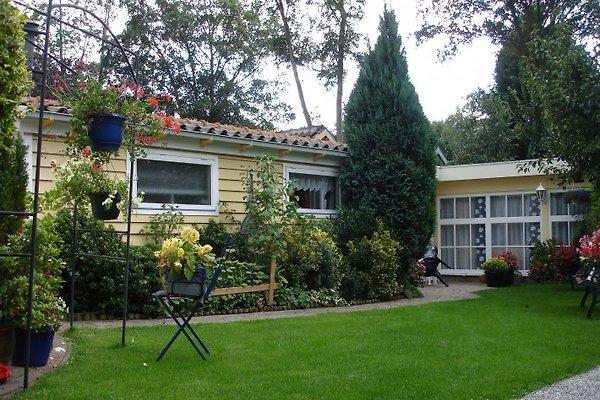Gemütlich Ferienhaus in Bergen - Bild 1