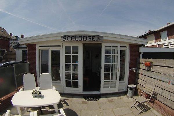 Cottage Sealodge à Egmond aan Zee - Image 1