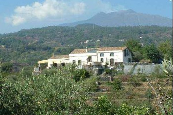 etna senior singles Sicily: mt etna and taormina rosolini, a typical rural town dating back to roman times, surrounded by orange and lemon groves siracusa.