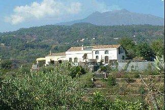 Palmento de Gilferraro Sicily