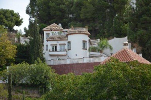 Comfort appartamenti in Algarrobo - immagine 1