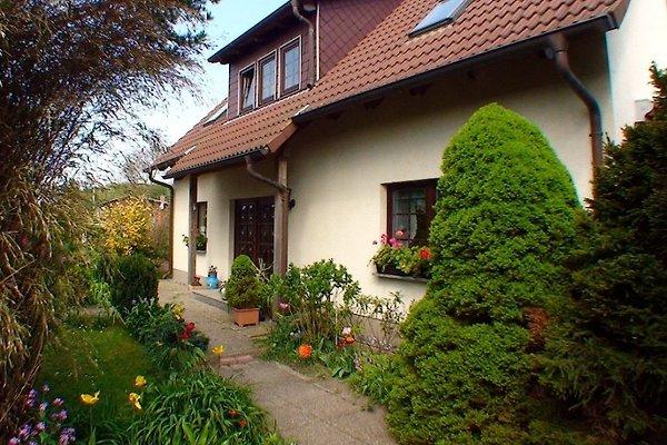 Ferienhaus Orth in Breege - immagine 1