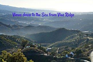Vine Ridge Studio