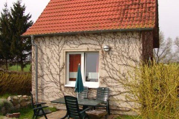 Haus Stranddüne à Zingst - Image 1
