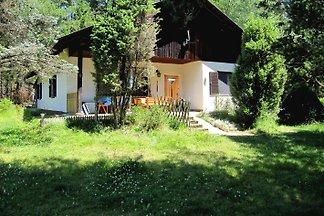 Ferienhaus HIRT i.d. Bergen, Alm