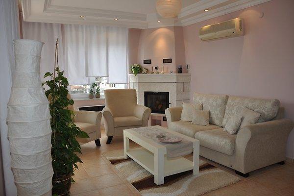Wunderbares Top Apartment in Alanya in Alanya - Bild 1