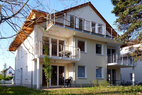 bernstein villa ferienwohnung in heringsdorf mieten. Black Bedroom Furniture Sets. Home Design Ideas