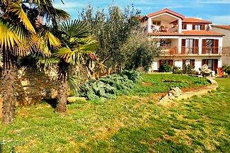 Apartment Istra 3
