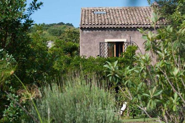 Palmento Monterosso à Trecastagni - Image 1