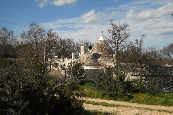Cottage Villa Marzia in Cisternino - immagine 1