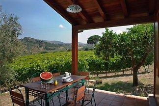 Borgo Maisale