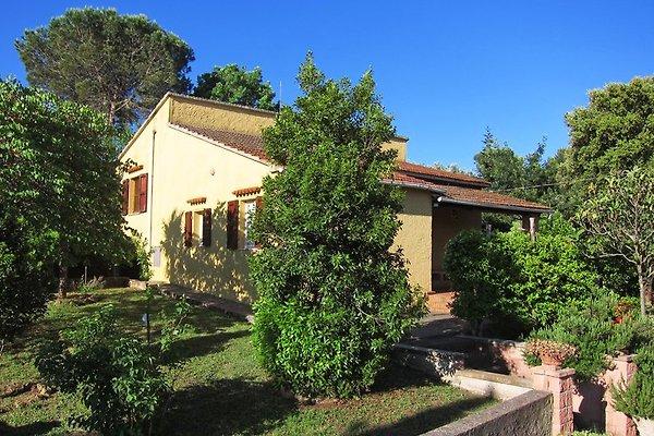 Casa 'Uccelliera' en Castagneto Carducci - imágen 1