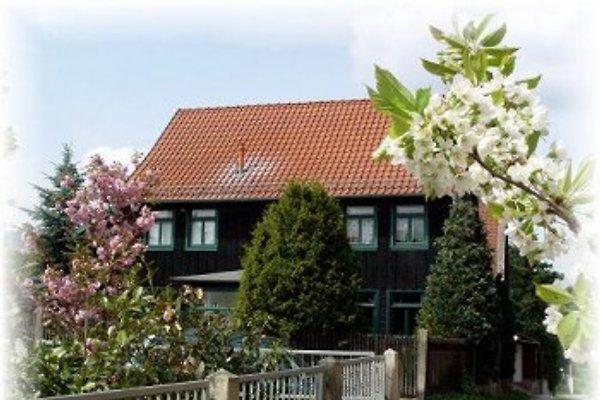 Apartament Holiday Darlingerode I w Ilsenburg Darlingerode - zdjęcie 1