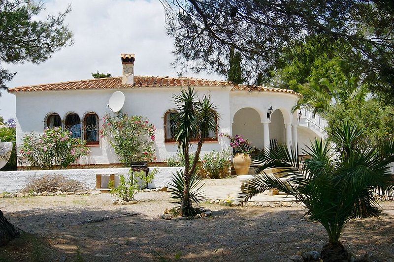 Casa Silvia  en Miami Playa - imágen 2