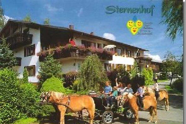 Sternenhof in Lossburg - Bild 1