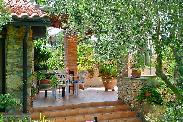 Casa Simonita, app. Nobile à Bibbona - Image 1