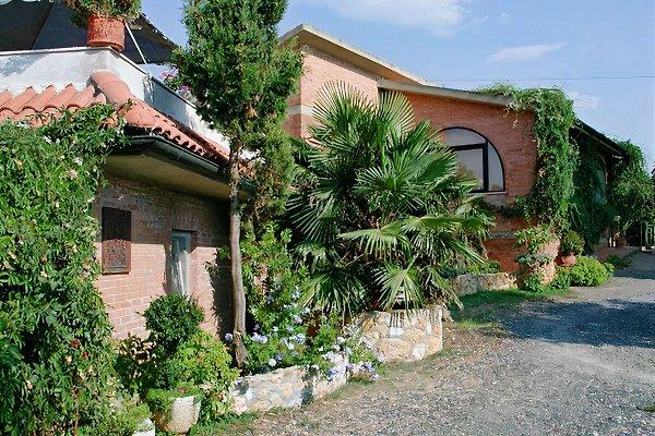Casa Simonita aplicación - elegante en Bibbona - imágen 1