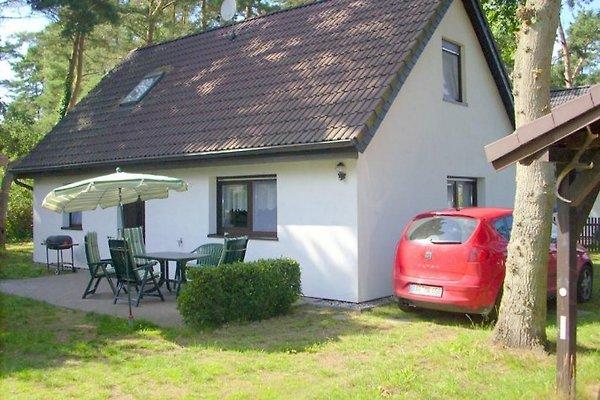 Ferienhaus am Darßwald en Wieck -  1