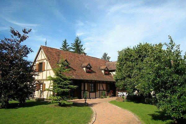 Gite-jebsheim.fr - Das Haus Danner in Jebsheim - Bild 1