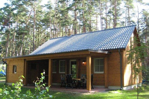 MALL-TOURS Ferienhäuser in Lychen - Bild 1