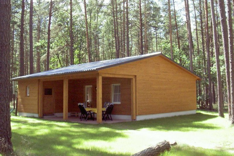 Ferienhaus Typ Eulennest
