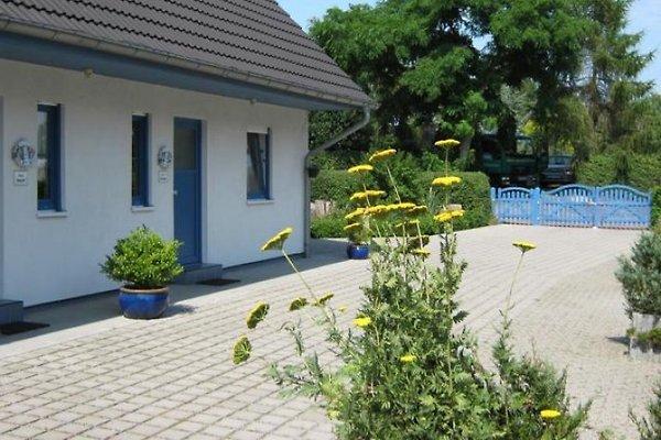 Ostsee-Ferienhaus en Wieck -  1