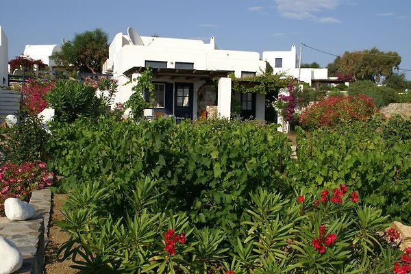 Privat Ferienhaus INOXIA in Naxos - immagine 1