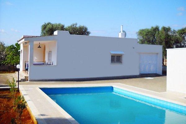Villa Olivia mit Privat Pool