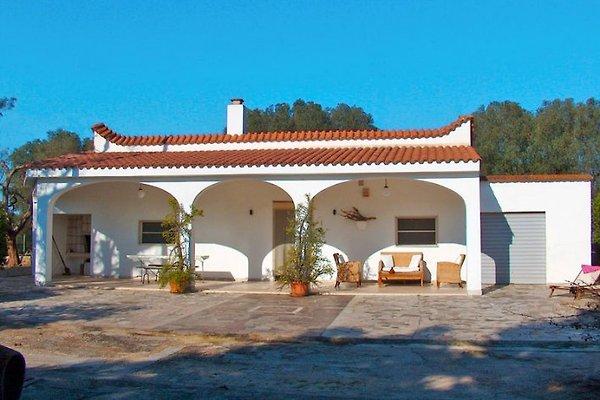 Villa Gabellotti à San Vito dei Normanni - Image 1