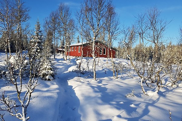 Ferienhaus Norwegen en Sjusjoen - imágen 1