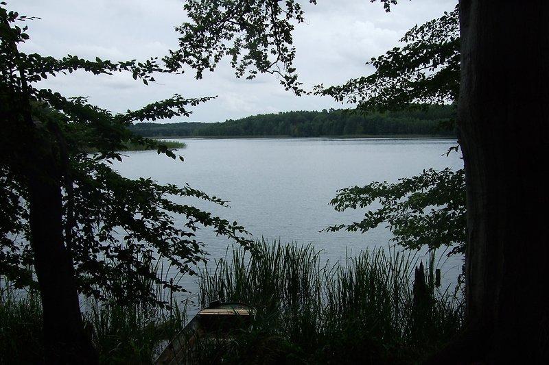 Vom Ferienhaus zu den Seen ca 15 Min. fußläufig