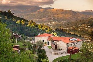 Vista (Quinta Olivia)